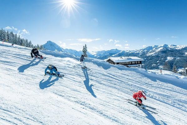 Welcher Ski passt