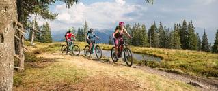 Reiteralmtrail Bikehotel Tauernhof Flachau
