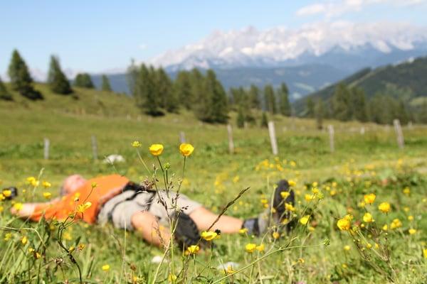 Urlaub in Flachau