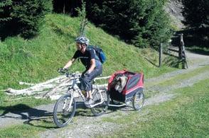 Mountainbiken mit Hund